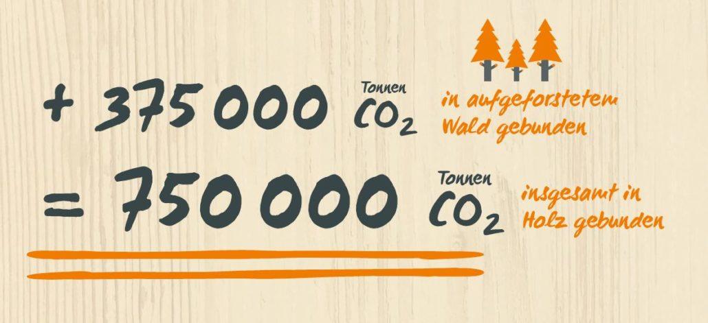 In der modernen Forstwirtschaft wird jeder gefällte Baum durch das Pflanzen eines neuen ersetzt, der dann, je größer er wird, noch mehr CO² speichert. Bedeutet: Wenn Sie heute ein Holzhaus bauen, sparen Sie auf lange Sicht sogar doppelt CO².