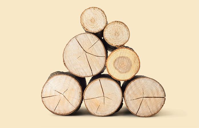 Der Baustoff Holz ist ein echter Allrounder. (Foto: FingerHaus)